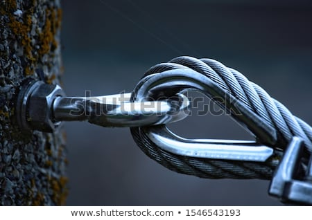 steel wire rope Stock photo © Fesus
