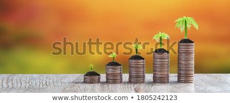 растущий · деньги · деревья · бизнесмен · аннотация - Сток-фото © cteconsulting