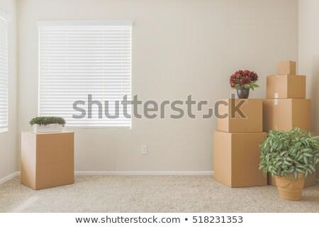 habitación · vacía · espacio · de · la · copia · pared · casa · cartón - foto stock © feverpitch