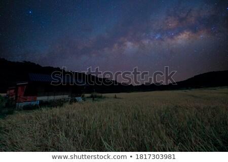 full moon over the ridge in the carpathians stock photo © kotenko