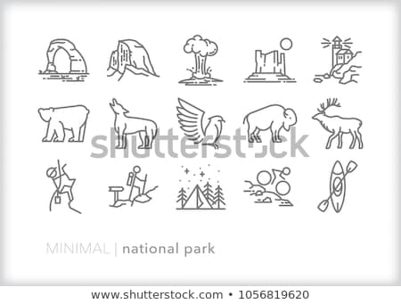 buffalo icon set stock photo © sdcrea