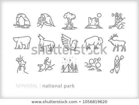 Buffalo Icon Set Stock photo © sdCrea