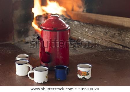 Esmalte copo café quente beber floresta Foto stock © drobacphoto