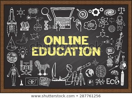 Online Coaching on Chalkboard with Doodle Icons. Stock photo © tashatuvango