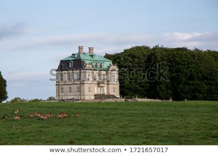 The Hermitage hunting lodge in Denmark Stock photo © bdspn