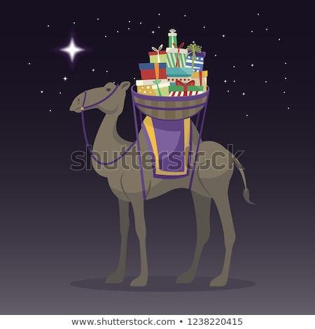 Happy epiphany day. Camel transporting gifts in the night Stock photo © Imaagio