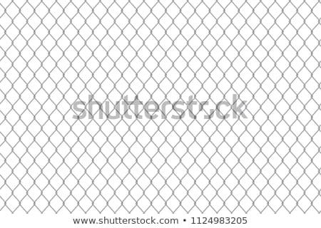 háló · kerítés · szögesdrót · kék · ég · háttér · fém - stock fotó © galitskaya
