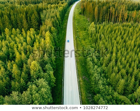 Asphalt road through the countryside Stockfoto © karandaev