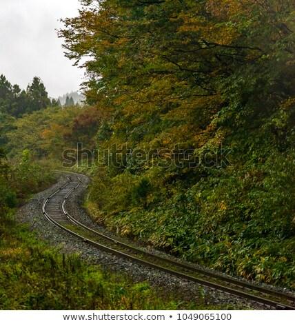 Stoomlocomotief track Japan lege spoorweg najaar Stockfoto © vichie81