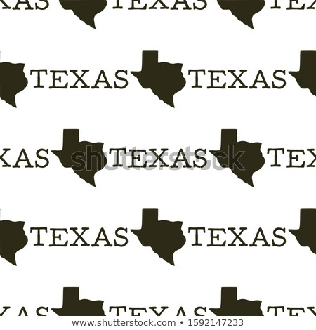Texas pattern with silhouette texas shapes and text. Vintage hand drawn typography seamless illustra Stock photo © JeksonGraphics