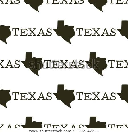 Texas wzór sylwetka tekst vintage Zdjęcia stock © JeksonGraphics