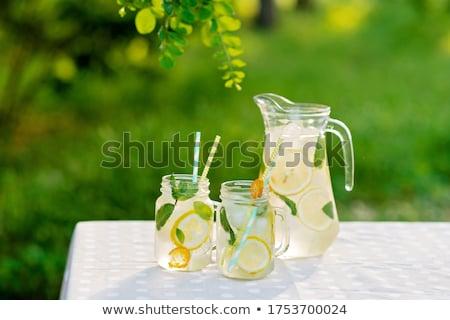 Mint and juicer Stock photo © karandaev