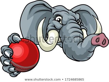 Elephant Bowling Ball Sports Animal Mascot Stock photo © Krisdog