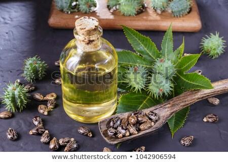 Castor oil with green beans Stock photo © bdspn