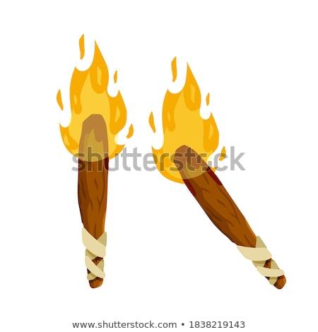 Pochodnia świetle Stick płomień kolor wektora Zdjęcia stock © pikepicture