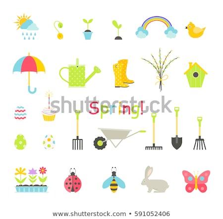 spring icon set Stock photo © bspsupanut