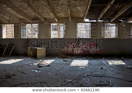 заброшенный здании разрушенный граффити стен завода Сток-фото © tilo