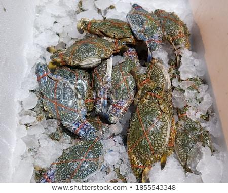 Satış pazar Madrid İspanya balık doğa Stok fotoğraf © elxeneize