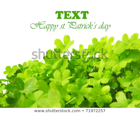 Foto stock: Clover Leaves Frame With Text Space Design
