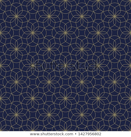 Geométrico étnico simétrico linhas vetor abstrato Foto stock © samolevsky