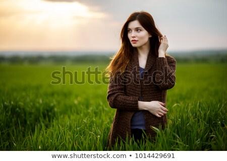 Gyönyörű barna hajú hölgy búzamező naplemente boldog Stock fotó © ruslanshramko