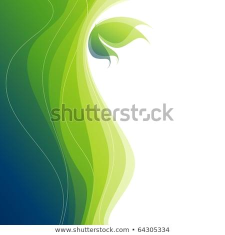 蝶 · 抽象的な · ベクトル · eps8 · 白 · 緑 - ストックフォト © ussr