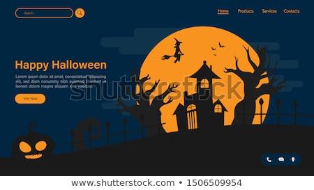 Halloween gece bat örümcek parti ürpertici Stok fotoğraf © Eireann