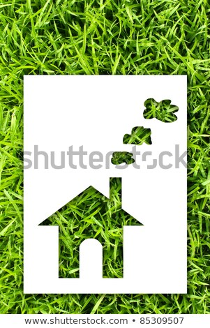 paper house on fresh grass land stock photo © ansonstock