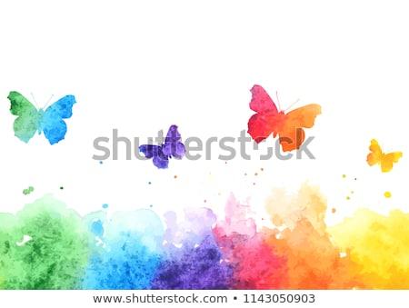 resumen · primavera · arco · iris · mariposas · ilustración · papel - foto stock © orson