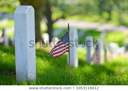 Military Cemetery and the American Flag Stock photo © njaj