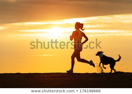 女性 · を実行して · 犬 · 森林 · 若い女性 · 夏 - ストックフォト © blasbike