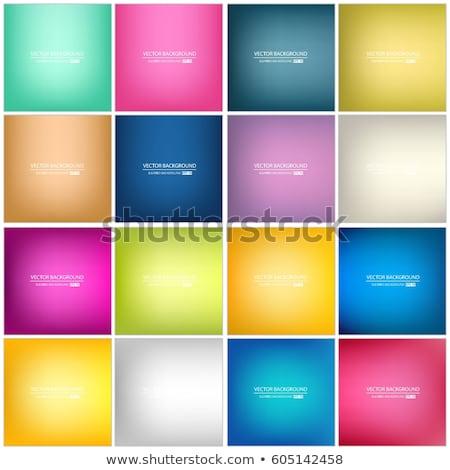 gyűjtemény · színes · háló · elemek · fényes · felirat - stock fotó © vetdoctor
