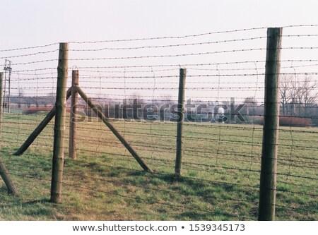 Koncentráció tábor Lengyelország háború fekete történelem Stock fotó © photocreo