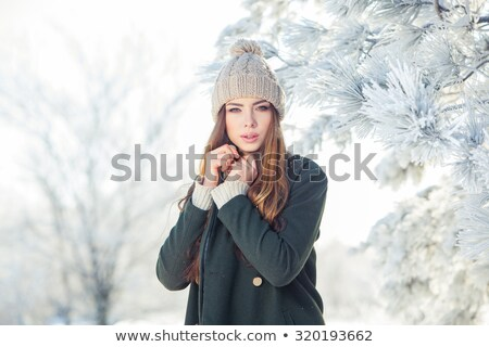 attractive blond beauty in winter scenery stock photo © konradbak