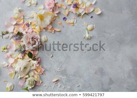 フローラル · 美しい · カード · 光 · 花 · テクスチャ - ストックフォト © Elmiko