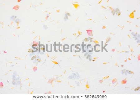 vecchio · fiore · carta · texture · perfetto · spazio - foto d'archivio © ilolab