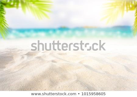 монтаж Тропический остров пляж небе дерево природы Сток-фото © photography33