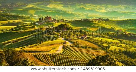 hills · norte · Itália · ver · estrada · pequena · cidade - foto stock © rglinsky77