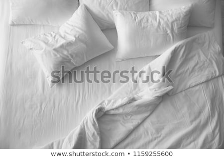 Pillow On A Bed Stock photo © franky242