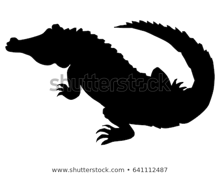 silhouette of crocodile stock photo © perysty