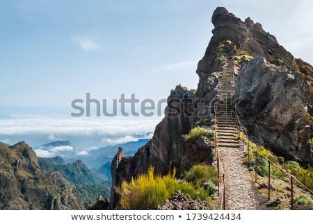 Stockfoto: Groot · berg · bomen · schoonheid · zonsopgang · eiland