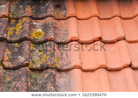 Artisan toit tuiles affaires construction industrie Photo stock © photography33
