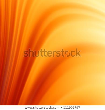 spektrum · vektor · keret · eps · 10 · terv - stock fotó © beholdereye