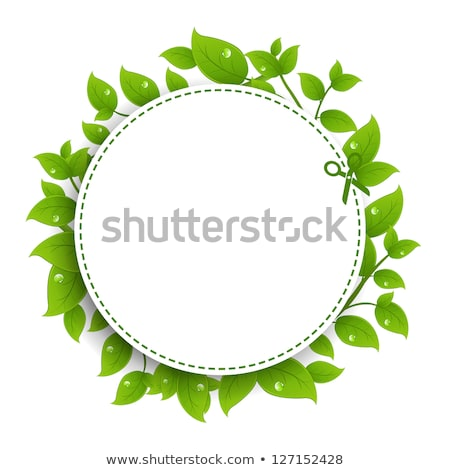 Announcement Coupon With Green Leaves Stock photo © adamson