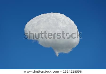 Cervello nube idee cadere pioggia segno Foto d'archivio © kistrialos