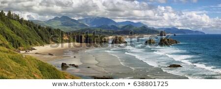 Oregón costa playas gaviotas agua Foto stock © Rigucci