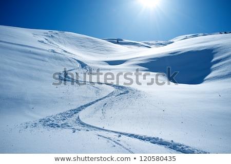 hó · sí · hódeszka · por · jég · tél - stock fotó © franky242