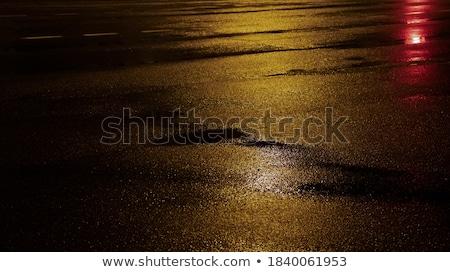 Wet Concrete Floor Stock photo © eldadcarin