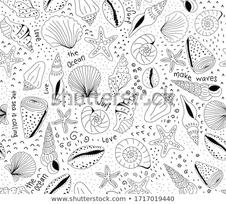 Clams pattern seafood texture background stock photo © lunamarina