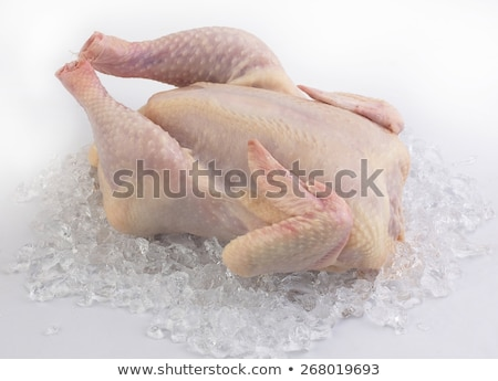 Chicken in ice cube Stock photo © Givaga